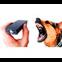 Фото Відлякувачі собак